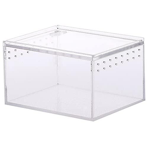Caja de terrario, Caja de Alimentación de Insectos, Caja de cría de Reptiles, Caja Transparente...