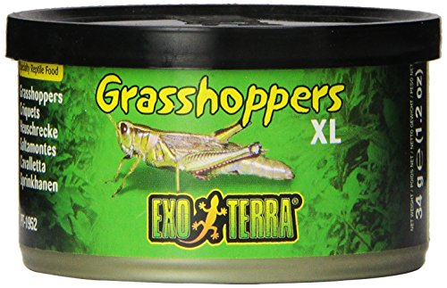 EXO TERRA Orthoptera XL, 34g