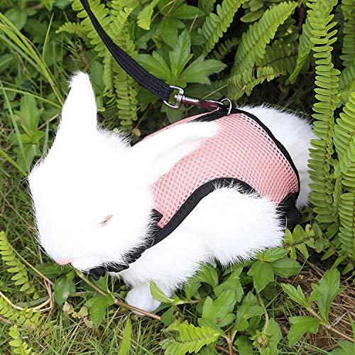 Petcomer Arnés Conejos con Correa Elástica para Animales Pequeños Conejos Hámsteres Gatos(S,...