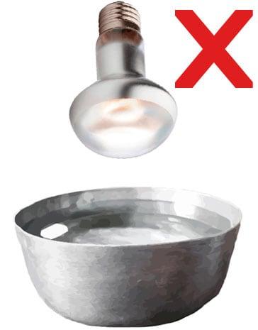 El spot encima del bol puede aumentar la humedad del terrario