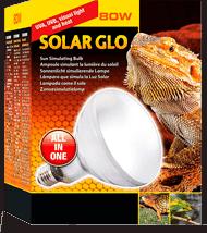 Bombilla Vapor de mercurio que ofrece Luz ultravioleta y punto caliente a tu pogona